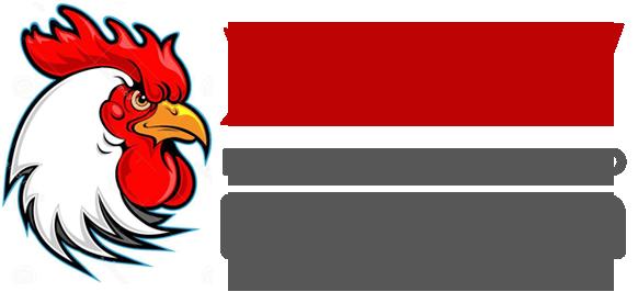 logo retina - Обезьянка с нами попрощается, Теперь Петух главою сможет быть