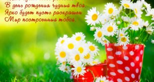 471471700418 16 310x165 - Счастья, праздника, везенья