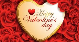 d4c3a6e7c6ad4a4d971f71f1d803e97e 310x165 - День влюбленных!!!