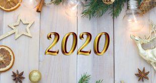 2020 01 310x165 - С НОВЫМ ГОДОМ!!! 2020 год КРЫСЫ