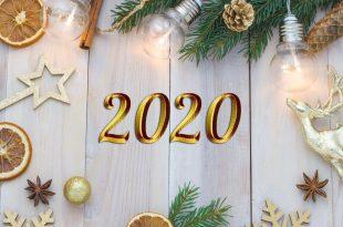 2020 01 310x205 - С НОВЫМ ГОДОМ!!! 2020 год КРЫСЫ